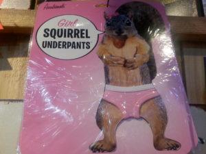 squirrel panties 1